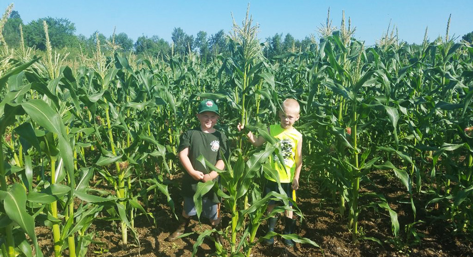 kids-corn-field_home_page.jpg