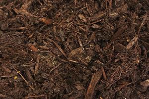 Dark Pine Mulch | $40/yard