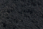 Black Mulch | $40/yard